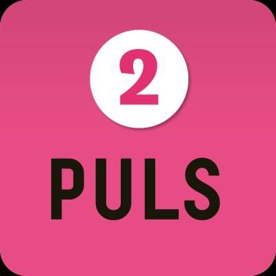 Puls 2 digibok 6 mån ONL