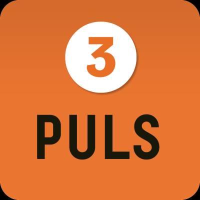 Puls 3 digibok 6 mån ONL